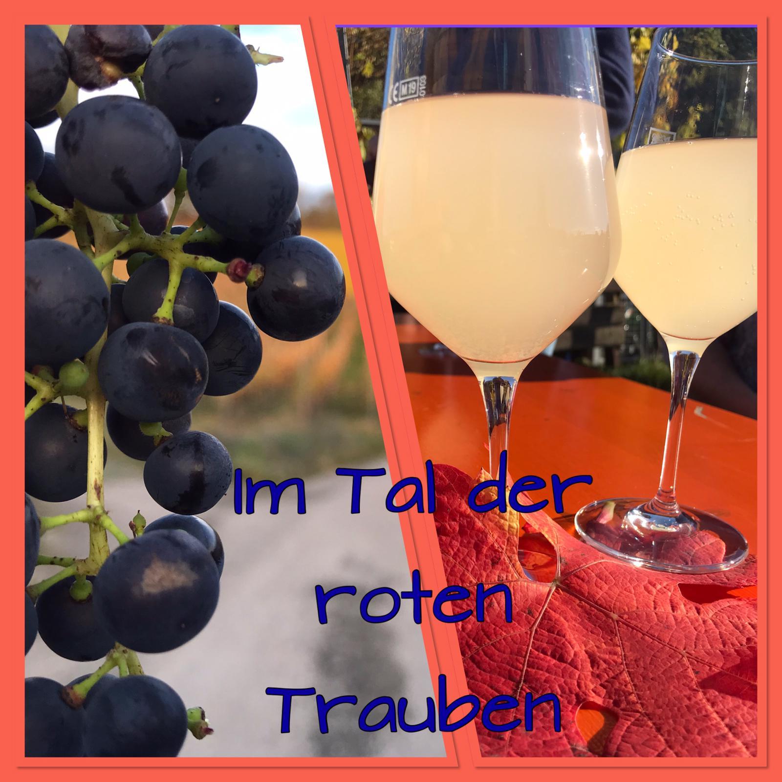 Das Ahrtal – roter Wein und schroffe Felsen